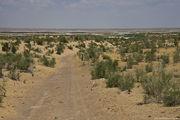 исчезающее соленое озеро Аяз / Узбекистан