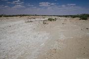 песок меняется в цвете / Узбекистан
