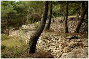 камни / Хорватия