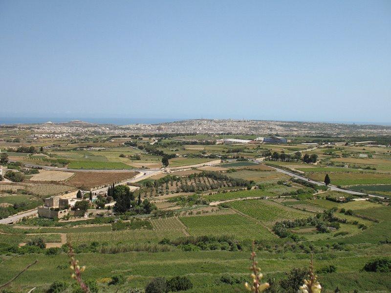Вид с крепостной стены Мдины / Фото с Мальты