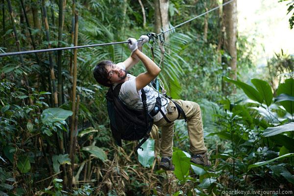 Gibbon Expirience в Лаосе / Фото из Лаоса