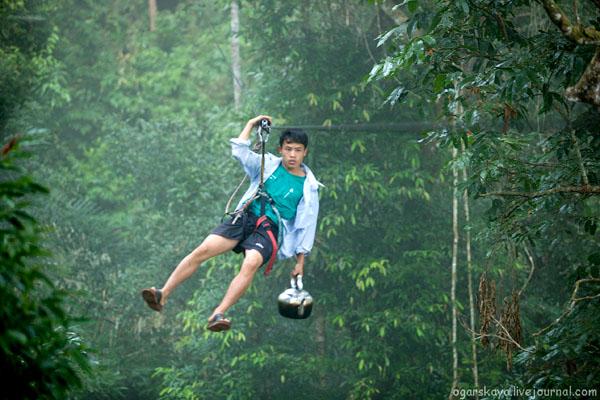 Так добывают воду в джунглях Лаоса / Фото из Лаоса