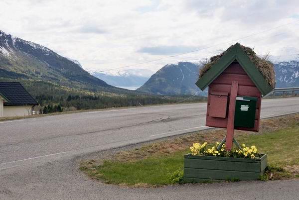 Сельская дорога в Норвегии / Фото из Норвегии