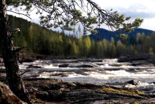 Горная река в Норвегии / Фото из Норвегии