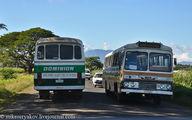 движение / Фиджи