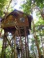 tree-house / Малайзия