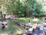 зеленая вода / Малайзия