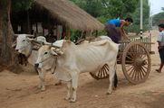 транспорт / Мьянма