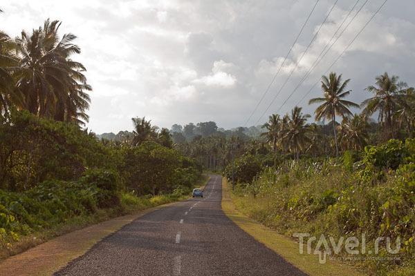 Газоны вдоль дорог на Самоа / Фото с Западного Самоа