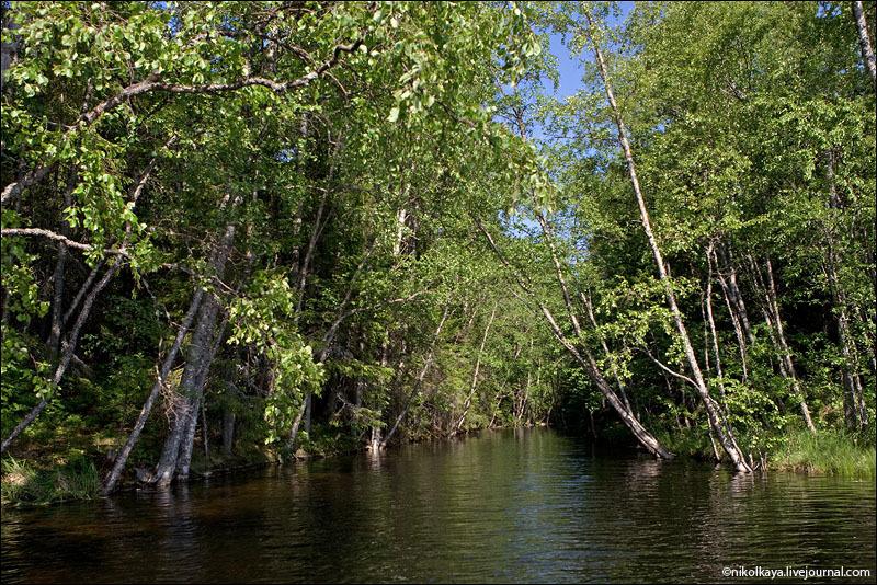 Рукотворные каналы на Большом Соловецком острове / Фото из России