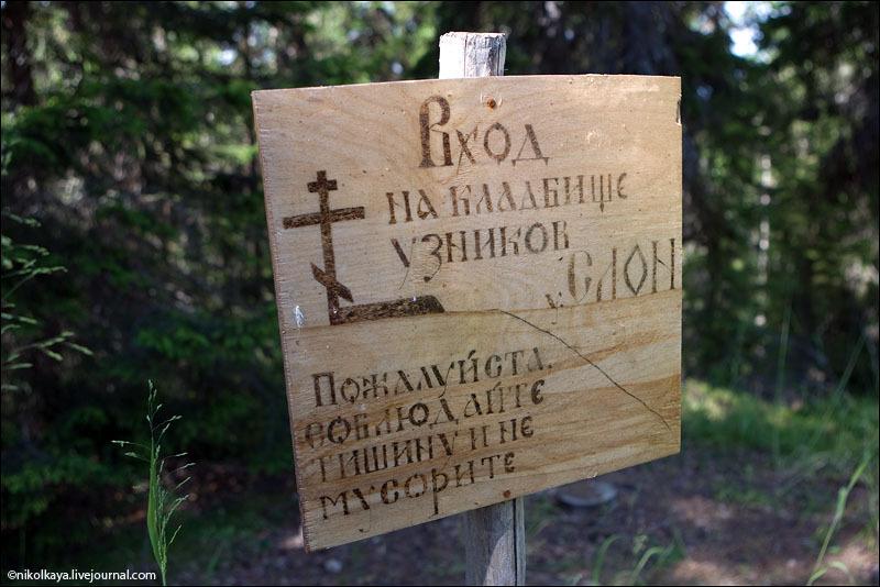 Кладбище узников СЛОН на Большом Соловецком острове / Фото из России