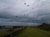 голландский форт / Шри-Ланка