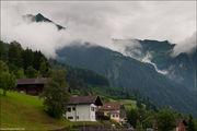 поросшие лесом / Лихтенштейн