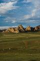 всепоглощающая степь / Монголия