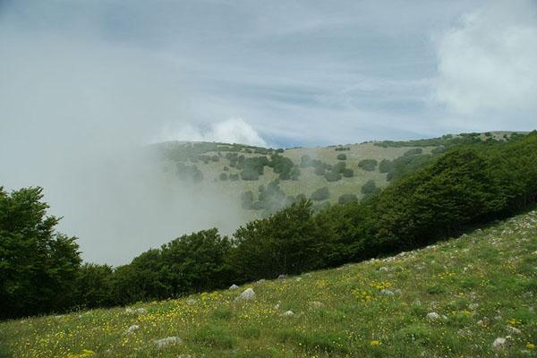 Холмистые горы Montie Madonie / Фото из Италии
