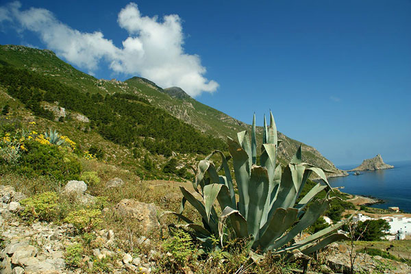 У начала подъема на гору Фальконе / Фото из Италии
