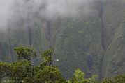 кратер горы Ваиалеале / США