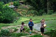 дети / Вьетнам