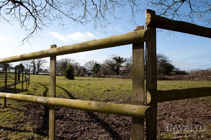 Ферма на Джерси / Фото из Великобритании