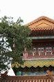 архитектура / Китай