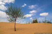 из песка / Россия