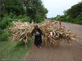 жительница племени Олатайя / Эфиопия