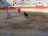 помощники матадора / Испания