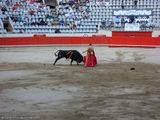 работа с быком / Испания