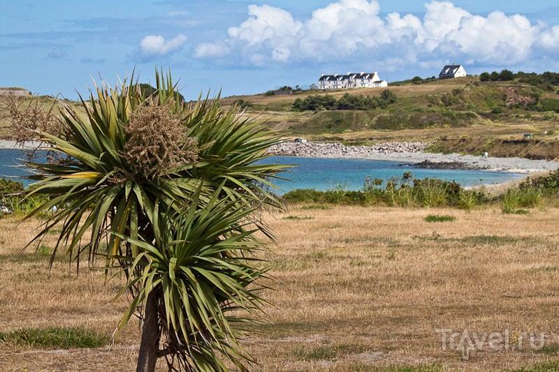Пейзаж острова Олдерни / Фото из Великобритании