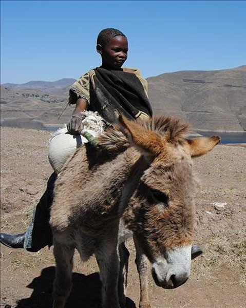 Мальчик из Лесото / Фото из Лесото