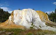 Mammoth Hot Springs / США