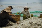 Это рыбалка / Вьетнам