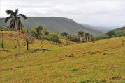 С порога коттеджа / Свазиленд