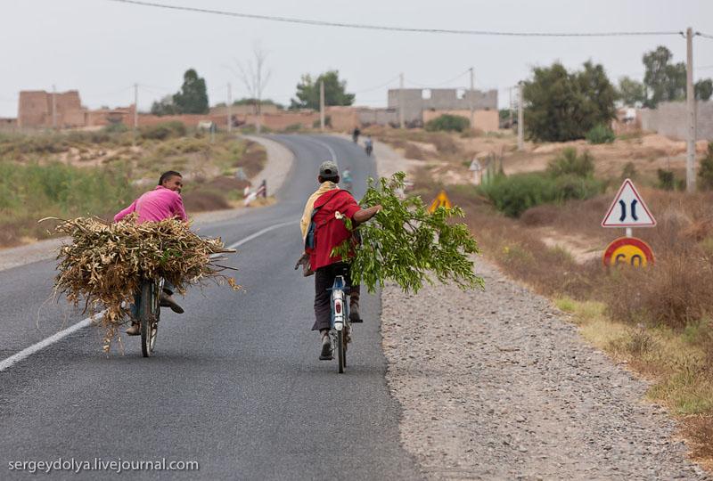 Велосипедисты на дороге в Марокко / Фото из Марокко
