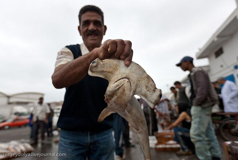 Рыбак в Агадире, Марокко / Фото из Марокко