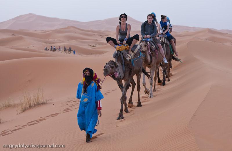 Караван с туристами в пустыне Сахара, Марокко / Фото из Марокко