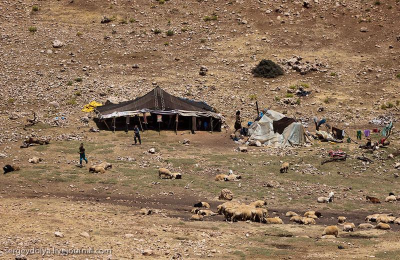 Кочевники в Марокко / Фото из Марокко