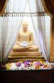 Цветы у статуи / Шри-Ланка
