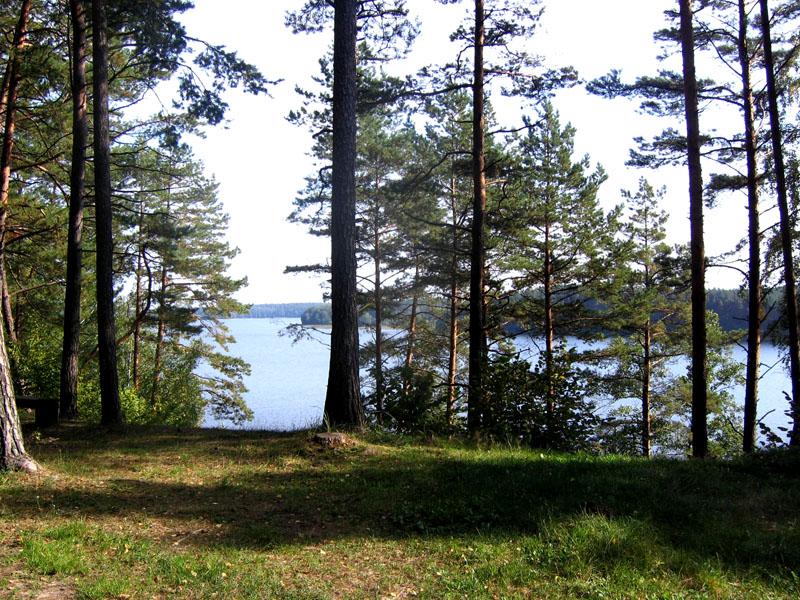 Литва озерная / Фото из Литвы