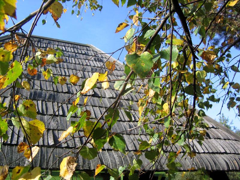 Осень в Литве / Фото из Литвы