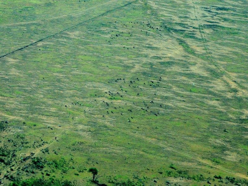 Вид на парк Масаи-Мара с самолета, Кения / Фото из Кении