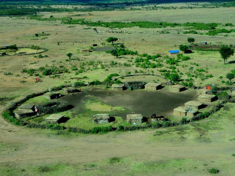 Ограда деревни масаев из колючего кустарника / Фото из Кении