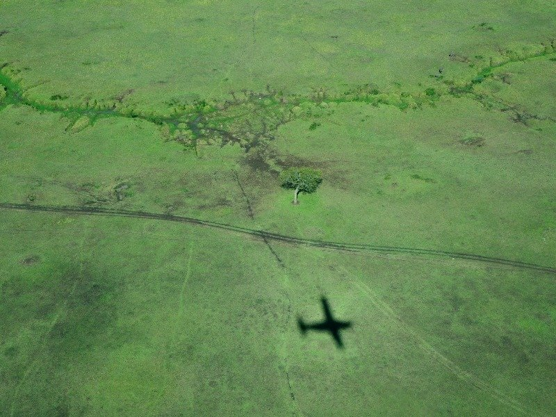 Полет над парком Масаи-Мара, Кения / Фото из Кении