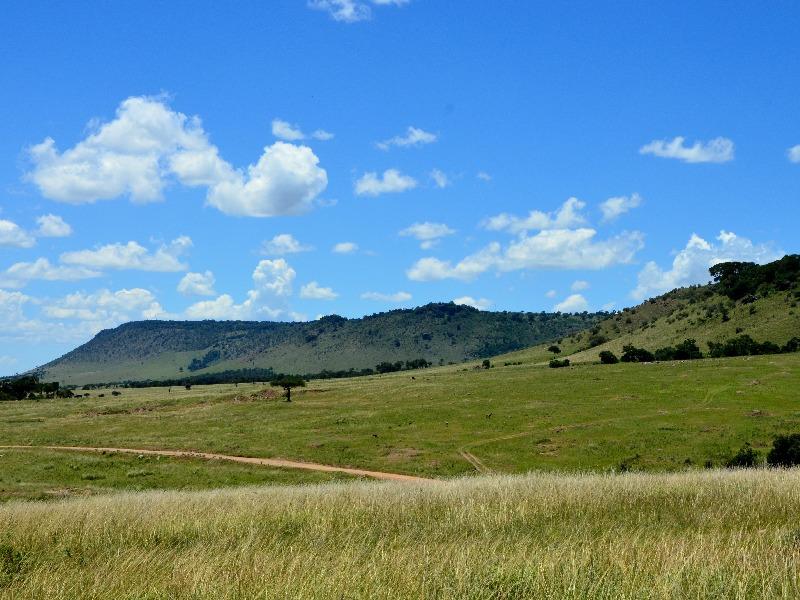Дорога в деревню масаев, Кения / Фото из Кении