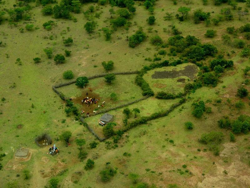 Вид на национальный парк Масаи-Мара с самолета, Кения / Фото из Кении