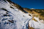 Снежная тропа / Болгария