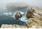 Туманный день в Балеале / Португалия