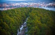 В районе Pyynikki / Финляндия