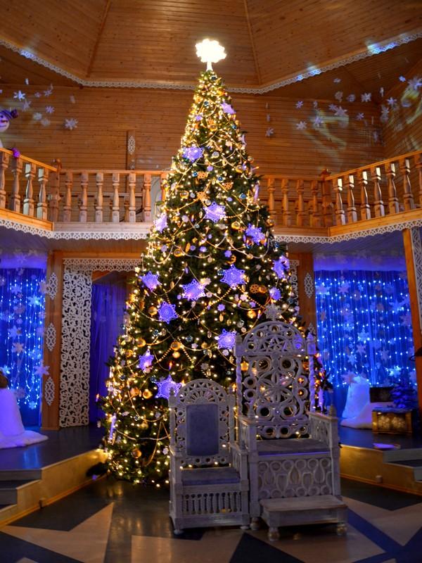 Ёлка в доме Деда Мороза / Фото из России