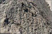 Песчано-глиняные породы / Канада